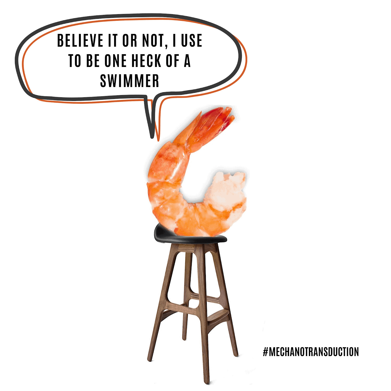 Shrimp on a stool