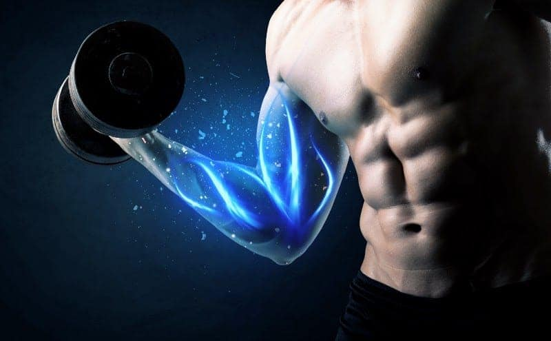 Muscular guy lifting a dumbbell showing you can build muscle at any age.