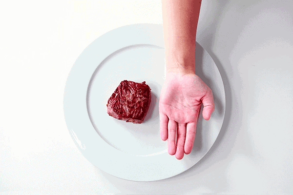 Protein portion size for women