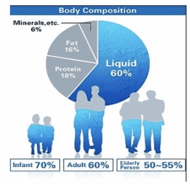Pie chart showing how much of our bodies are made of water to demonstrate how important hydration is
