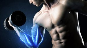 Genetics, Muscle Recovery Rate, And Injury Risk
